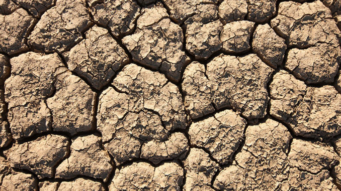 Cracked and drying mud photographed from above. Australian weather photos by Excitations,